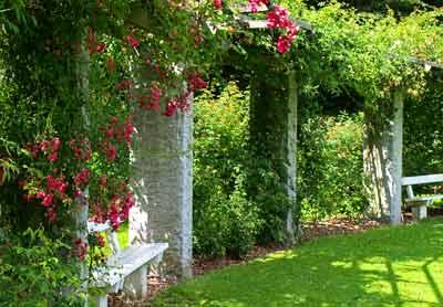 Marselisborg Slot - parken - rosenhaven